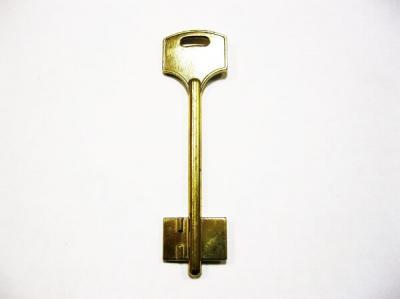 Заготовка для ключа ЭЛЬБОР-1 (13) флажковая