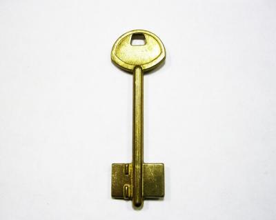 Заготовка для ключа 1GARD1 GARD-1G_X_X сейф (RU) GARDIAN флажковая