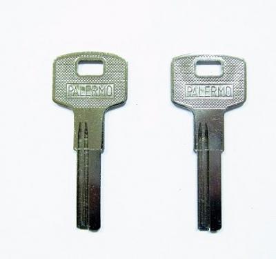 Заготовка для ключа POLERMO E-303 вертикальная 2 паза