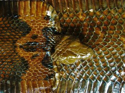 Кобра шкура натуральная коричневая